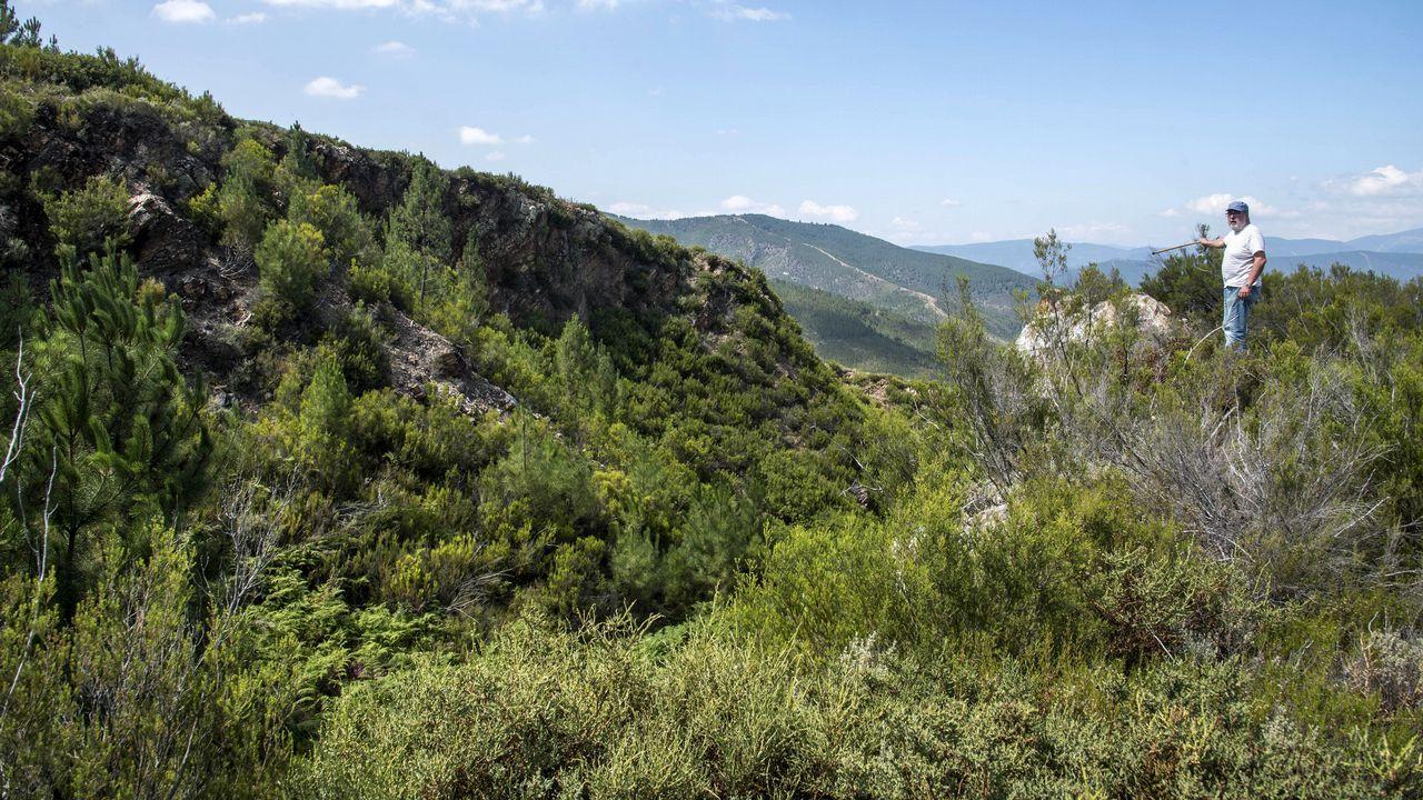 Las mejores imágenes de la ruta de Os Cófaros.Viñas en Ribeira Sacra