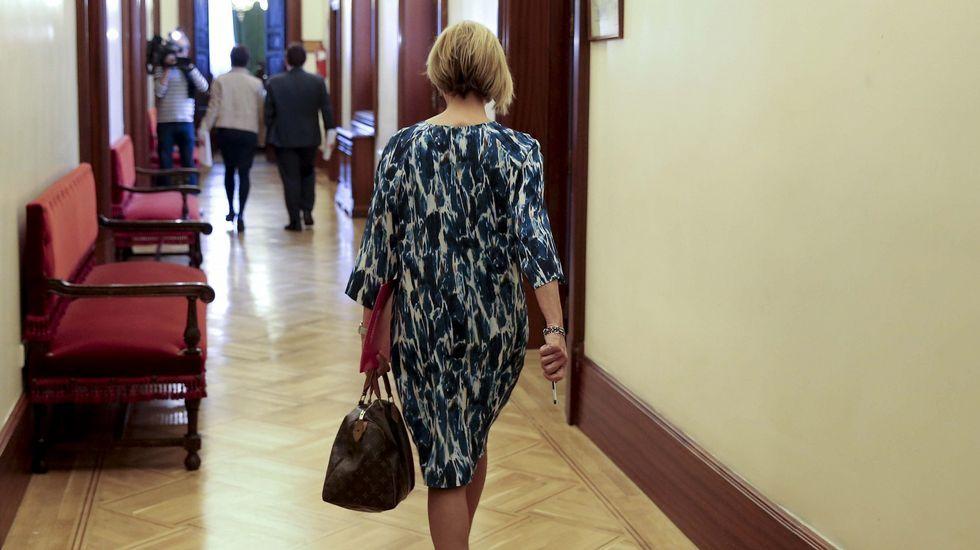 Rosa Díez, en una imagen de archivo a su llegada al Congreso de los Diputados.