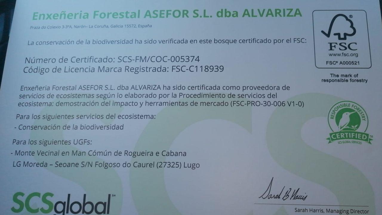 El certificado de servicios ecosistémicos que acaba de recibir la comunidad de montes de Devesa da Rogueira es el primero de España y el segundo de Europa que se concede a un bosque