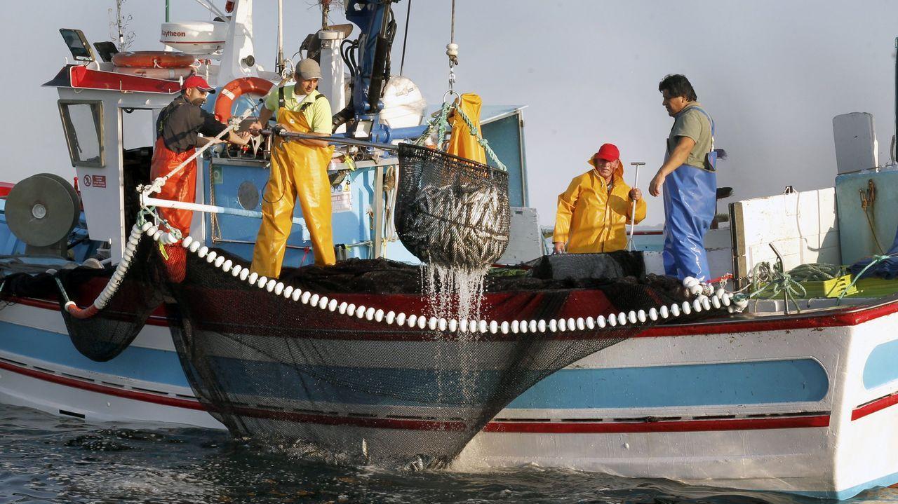 Un «xeiteiro» pescando sardina en la ría de Arousa, el pasado verano