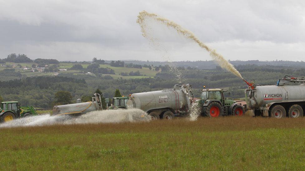 Sin acuerdos por escrito, siguen los vertidos de leche.Los ganaderos afirman que los costes de producción son más elevados de lo que dice el ministerio.