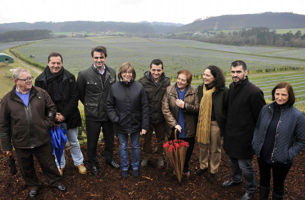 Mato, en el centro, con Quintana, Rodríguez, Calvo, Cribeiro o Calvín, ayer en la plantación.