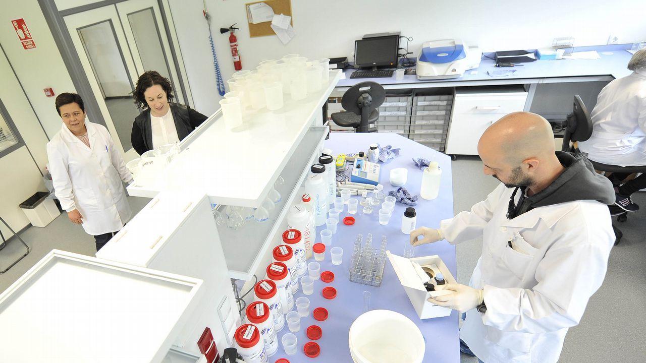El laboratorio estrenó unas modernas instalaciones hace tres años