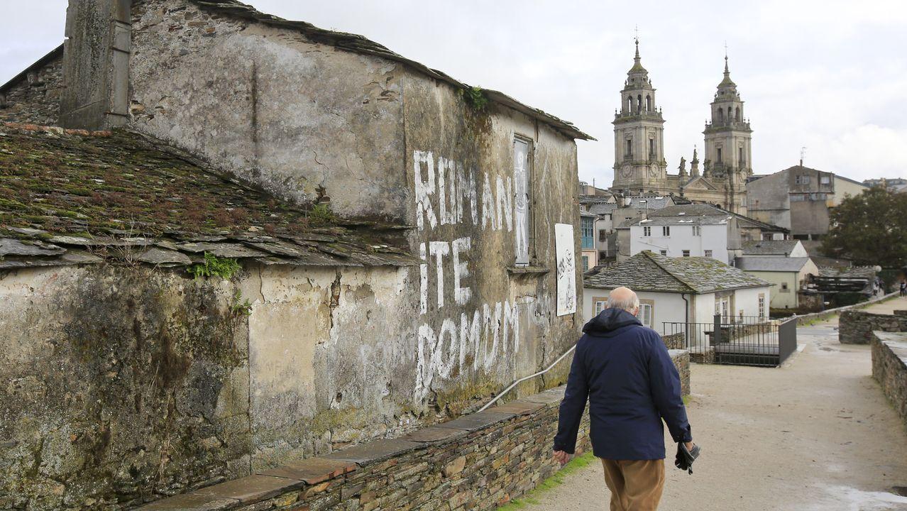 CASA TORRE  COMPLETAMENTE ABANDONADA ADOSADA A LA MURALLA JUNTO A LA PUERTA DE PORTA MIÑA EDIFICIO, RUINA
