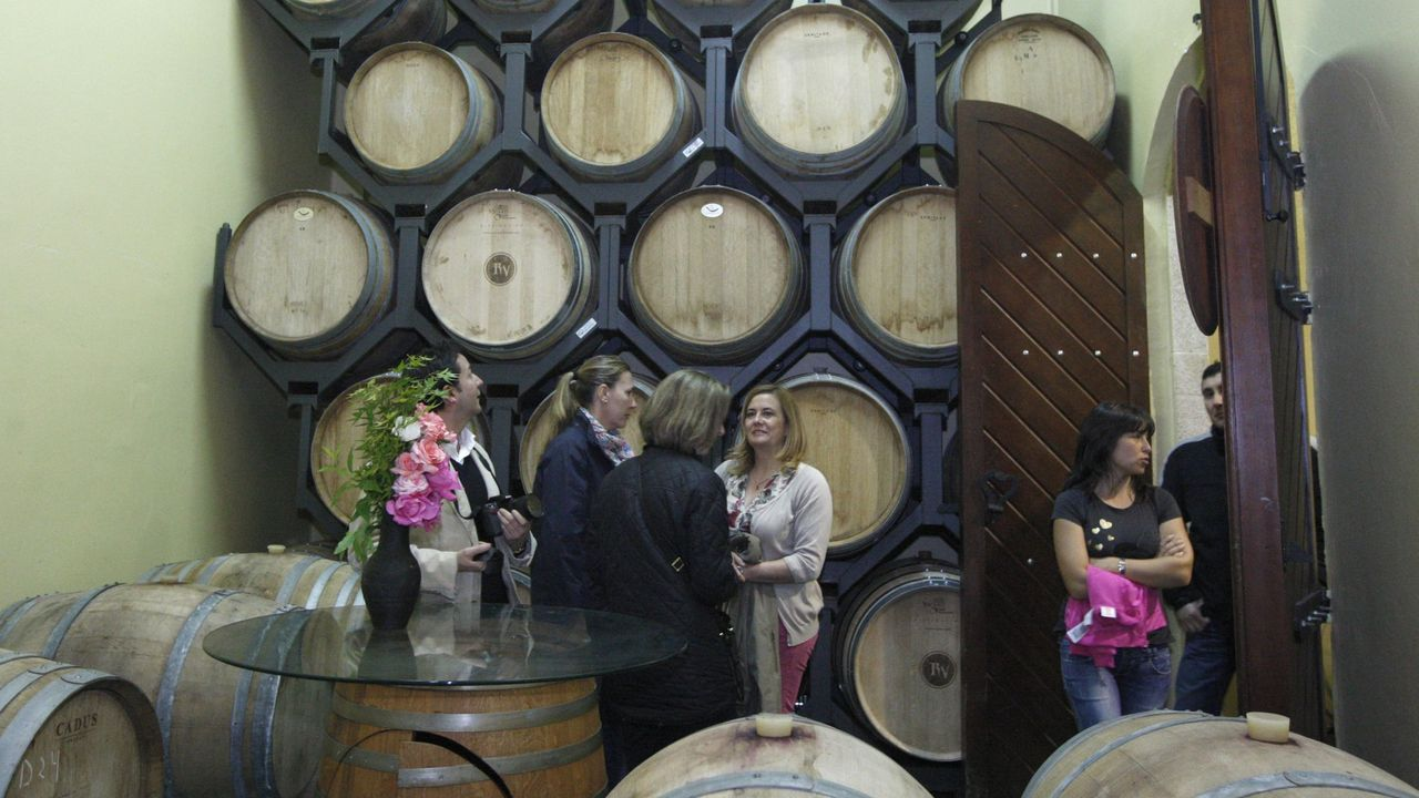 Una visita guiada a las instalaciones de la bodega Regina Viarum en Sober, en una imagen de archivo