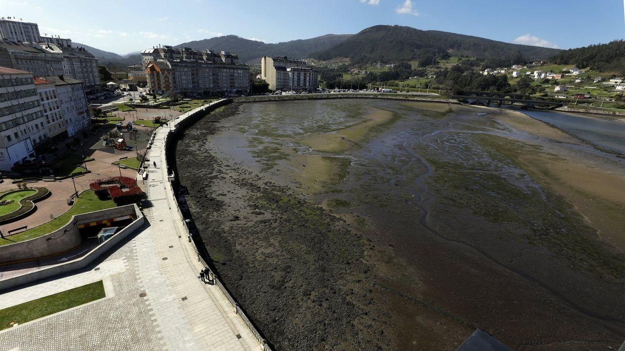 A pesar de que intentaron devolverlos al mar, los dos calderones acabaron muriendo.El alcalde de Burela, Alfredo Llano, saliendo del Ayuntamiento