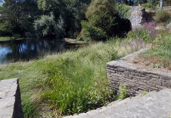La laguna de Begonte
