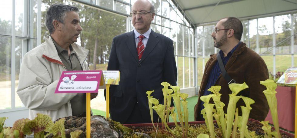 A Vigo sin pasar por Santiago.El alcalde Agustín Fernández acudió ayer a la apertura de la exposición de plantas carnívoras.