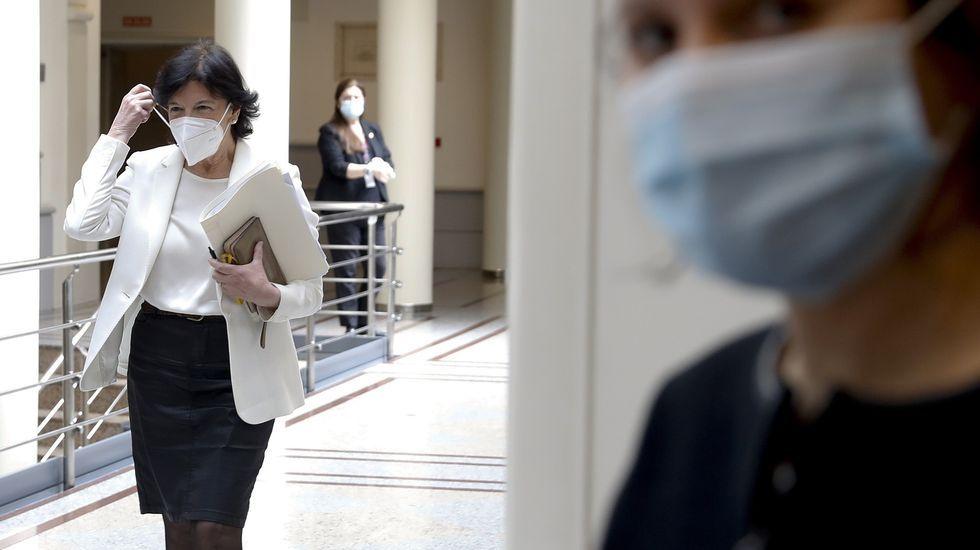 Isabel Celaá, ministra de Educación, en el Congreso