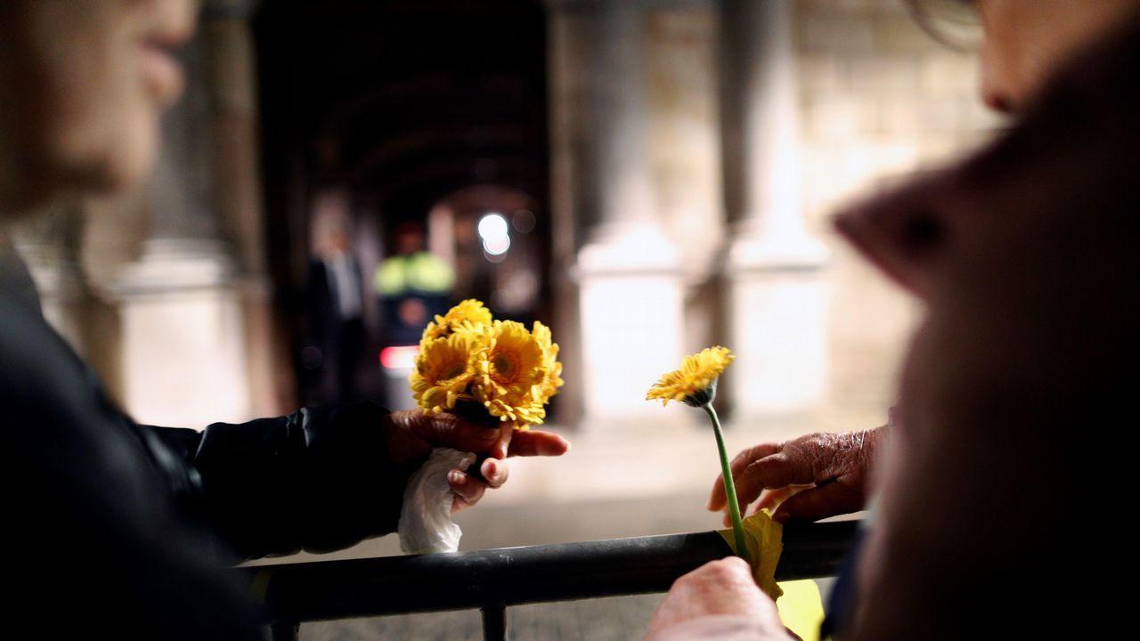 De los lazos a las vacas, ovejas, mariposas y flores... amarillas.Marcos de Quinto