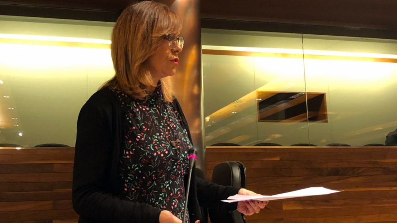 La consejera de Cultura del Principado en la Junta General  .Ángela Vallina