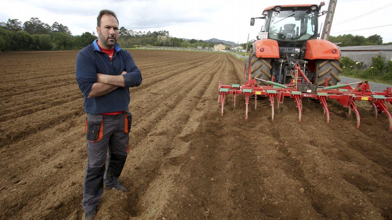José Antonio Muiño, en una finca que acaba de arar para plantar cereal