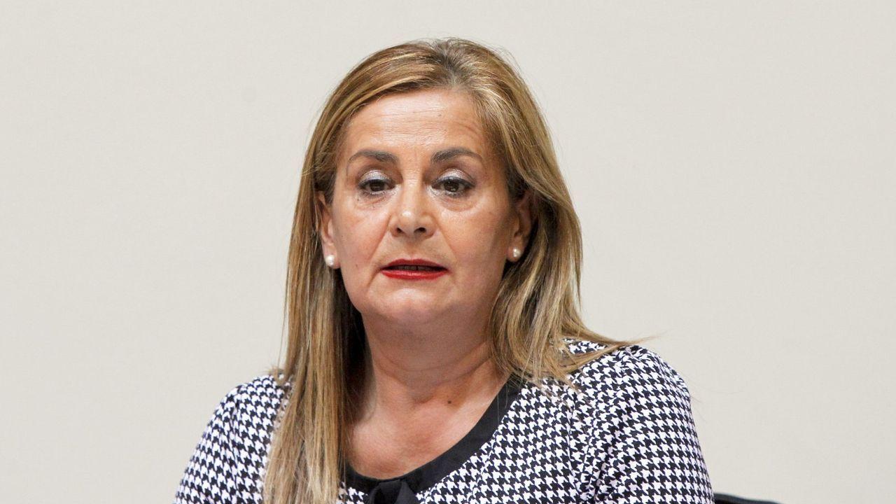 Entrevista a Gonzalo Pérez Jácome.En el 2015, Carmela Silva sí compareció en la Comisión de Presupuestos del Parlamento