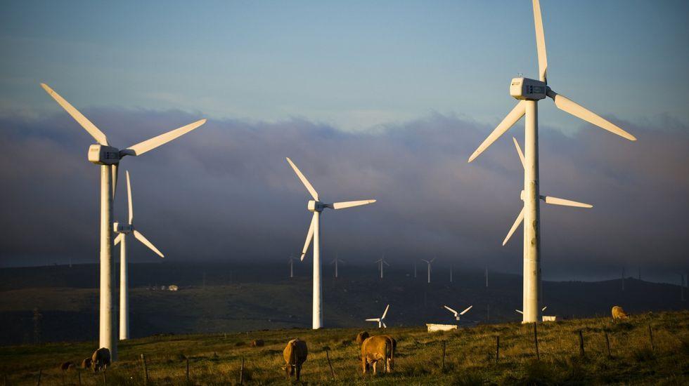 Los aerogeneradores son parte del paisaje de A Capelada.