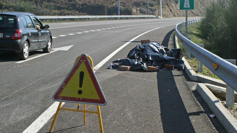 Un caballo muerto en la variante de Marín, tras ser arrollado por un vehículo