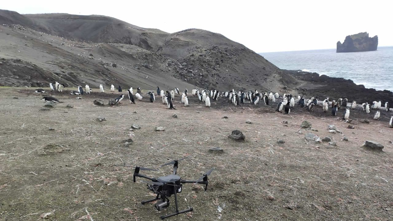 El dron con el que están captando imágenes aéreas de la colonia para el estudio del científico Andrés Barbosa