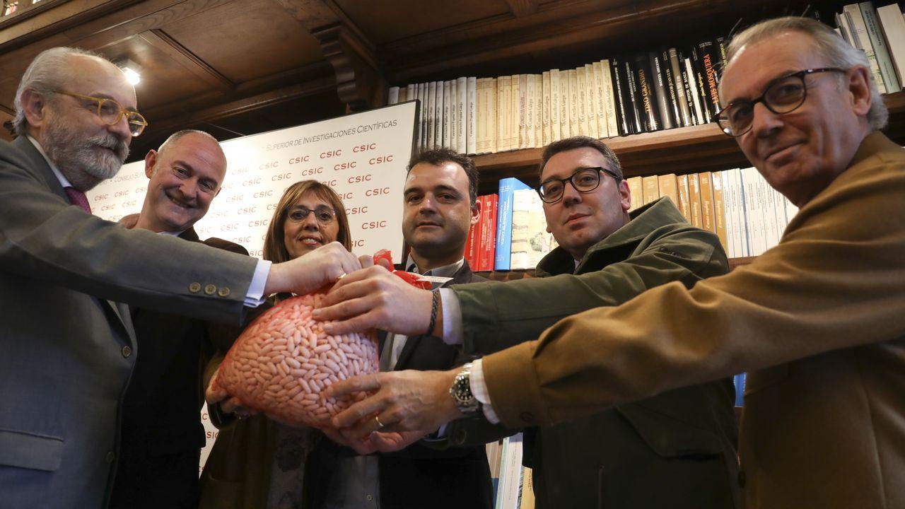 Las imágenes del 8M en Galicia.Cargos del CSIC y del sector, presentaron la semilla base.