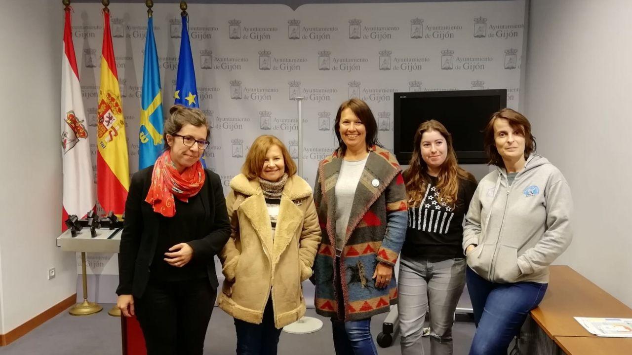 Reunión de Podemos con representantes de protectoras de animales