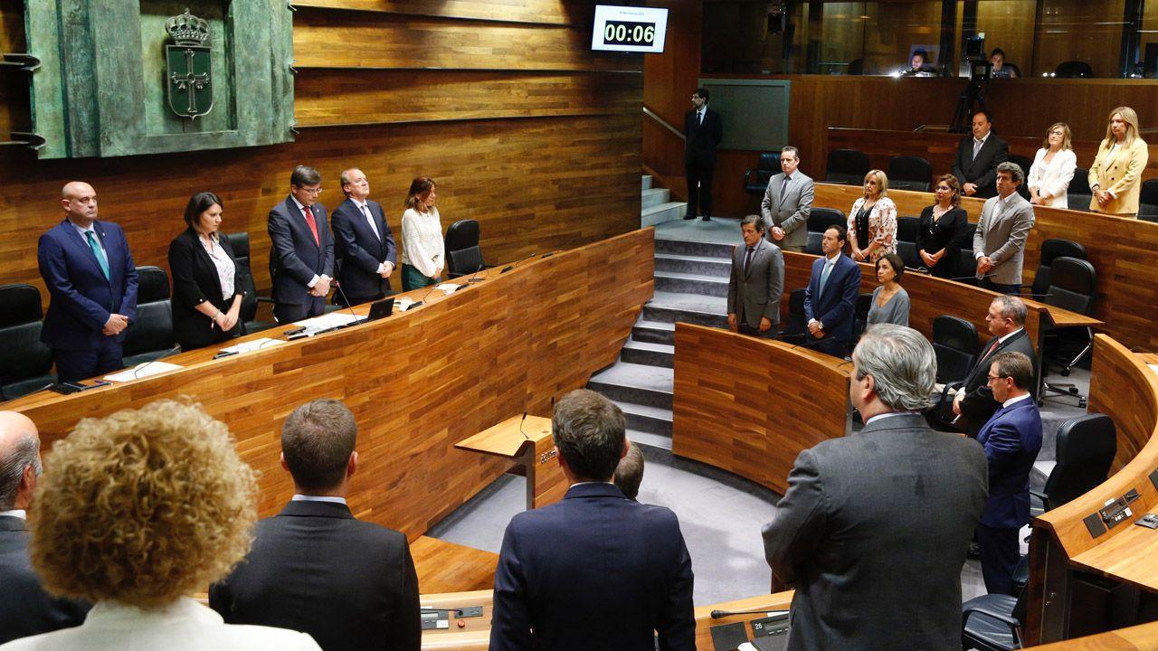 Los grupos guardan un minuto de silencio en el pleno institucional del Día de Asturias