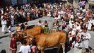 Feira Franca de Pontevedra, cuya edición del 2020 se suspende definitivamente a causa del covid-19