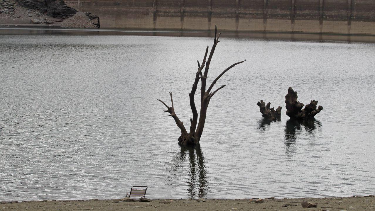 Barro y árboles sumergidos. Este es el aspecto que presenta el embalse hoy, con algunos árboles sumergidos ya visibles y barro a la vista en las orillas. En la foto se ve una silla de playa abandonada
