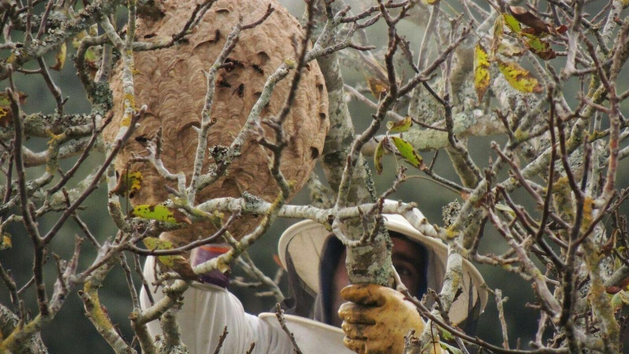 Sanxenxo se dota de socorristas para afrontar un verano con garantías.Imagen de archivo del embalse Presa de Zamáns