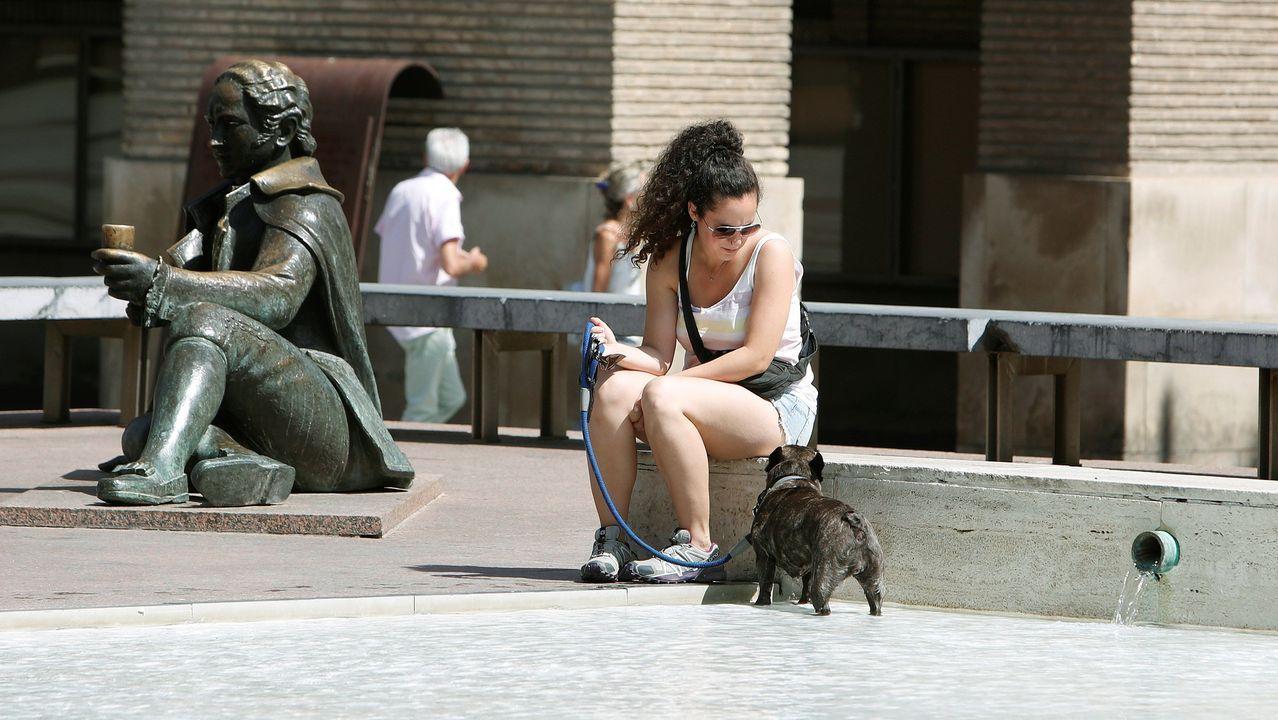 En la imagen una mujer refresca a su perro en la fuente de Goya e la Plaza de El Pilar, en Zaragoza