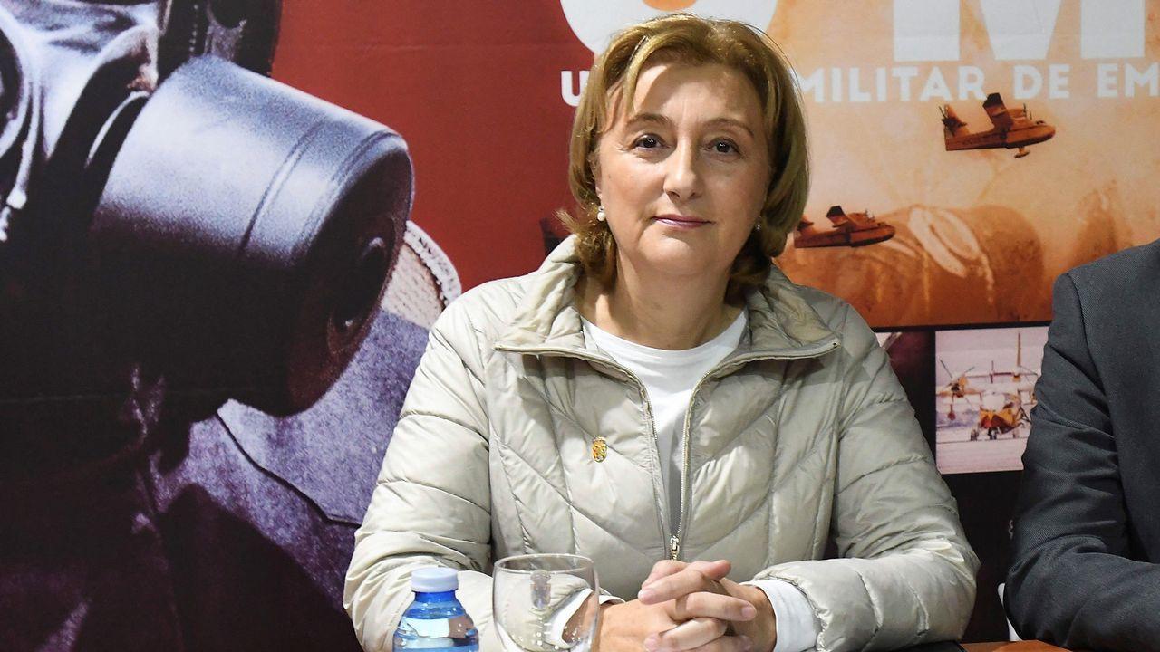 La delegada del Gobierno en el Principado de Asturias, Delia Losa