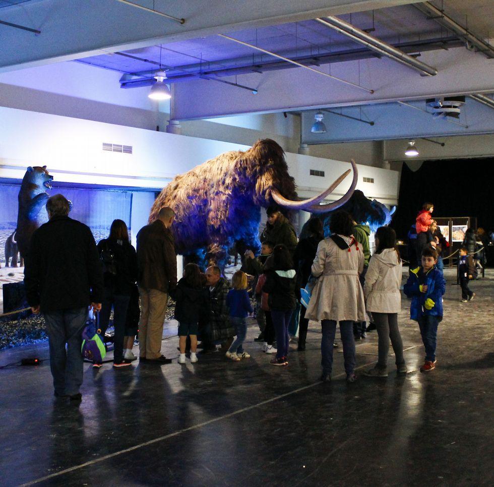 La exposición de dinosaurios se clausura mañana