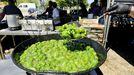El pimiento de Mougán será mas escaso este año y no ha tenido su fiesta gastronómica habitual