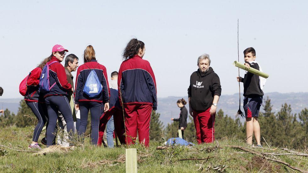 Os rapaces estiveron acompañados por profesores e persoal do distrito forestal Terras de Lemos