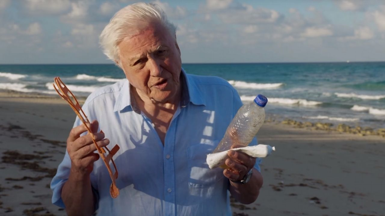 En el último episodio de Blue Planet 2, Attenborough alerta sobre la amenaza de los plásticos