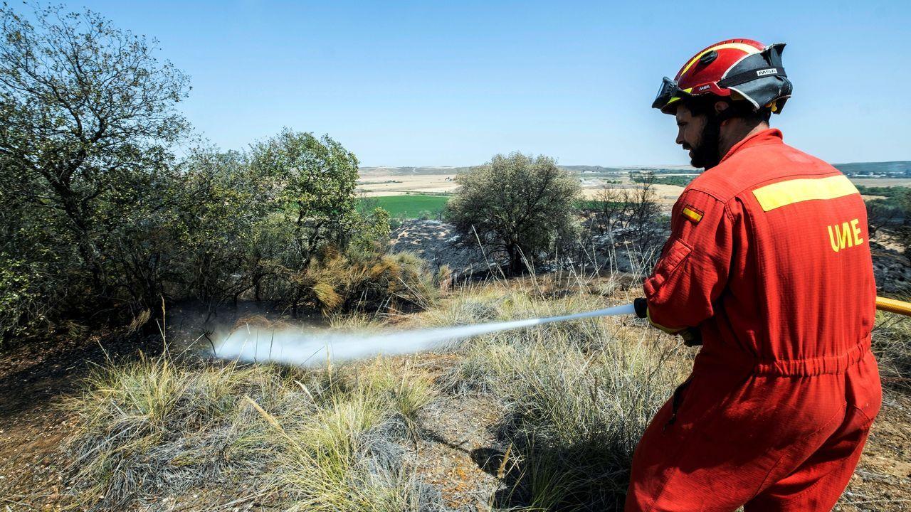Un Miembro de la Unidad Militar de Emergencia refresca la zona del municipio de Albarreal del Tajo, en Toledo