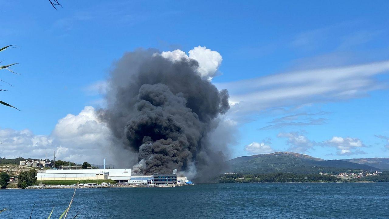 Los servicios de emergencias trabajan en la extinción del incendio en las instalaciones de Jealsa
