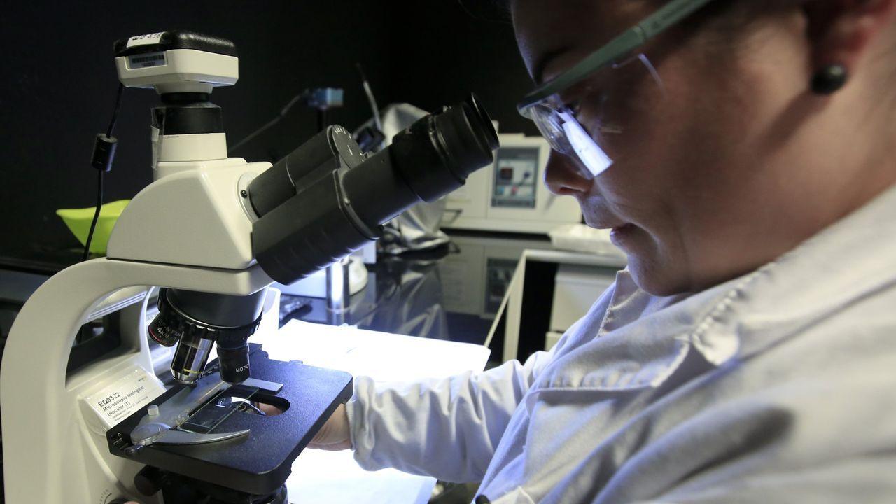 Laboratorios de la empresa Amslab