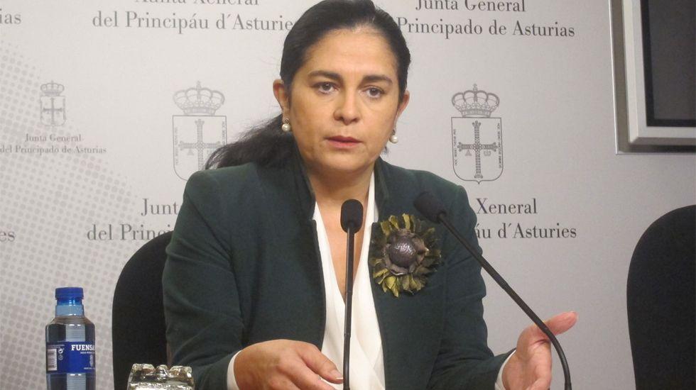 Concentración en Riosa para condenar las amenazas a los concejales de IU.Carmen Fernández, diputada de Foro