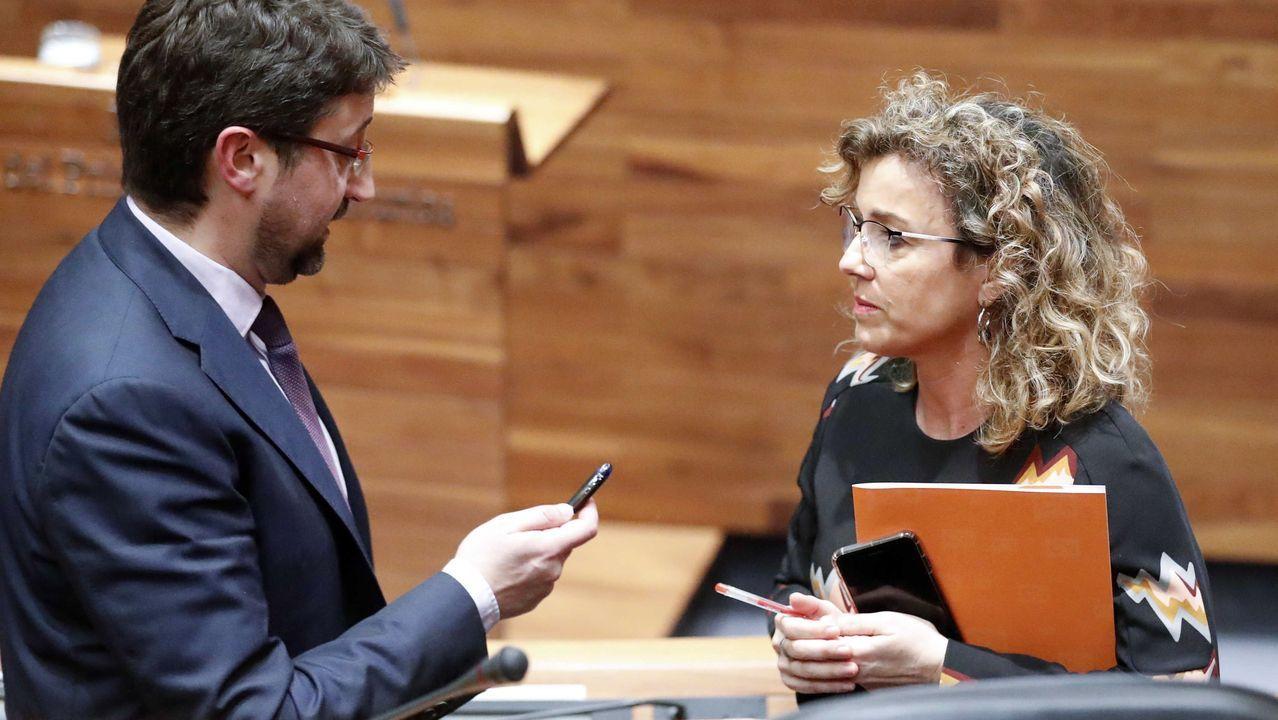 La diputada de Ciudadanos en la Junta General Susana Fernández (d) y el consejero de Industria, Empleo, y Promoción Económica, Enrique Fernández (i),