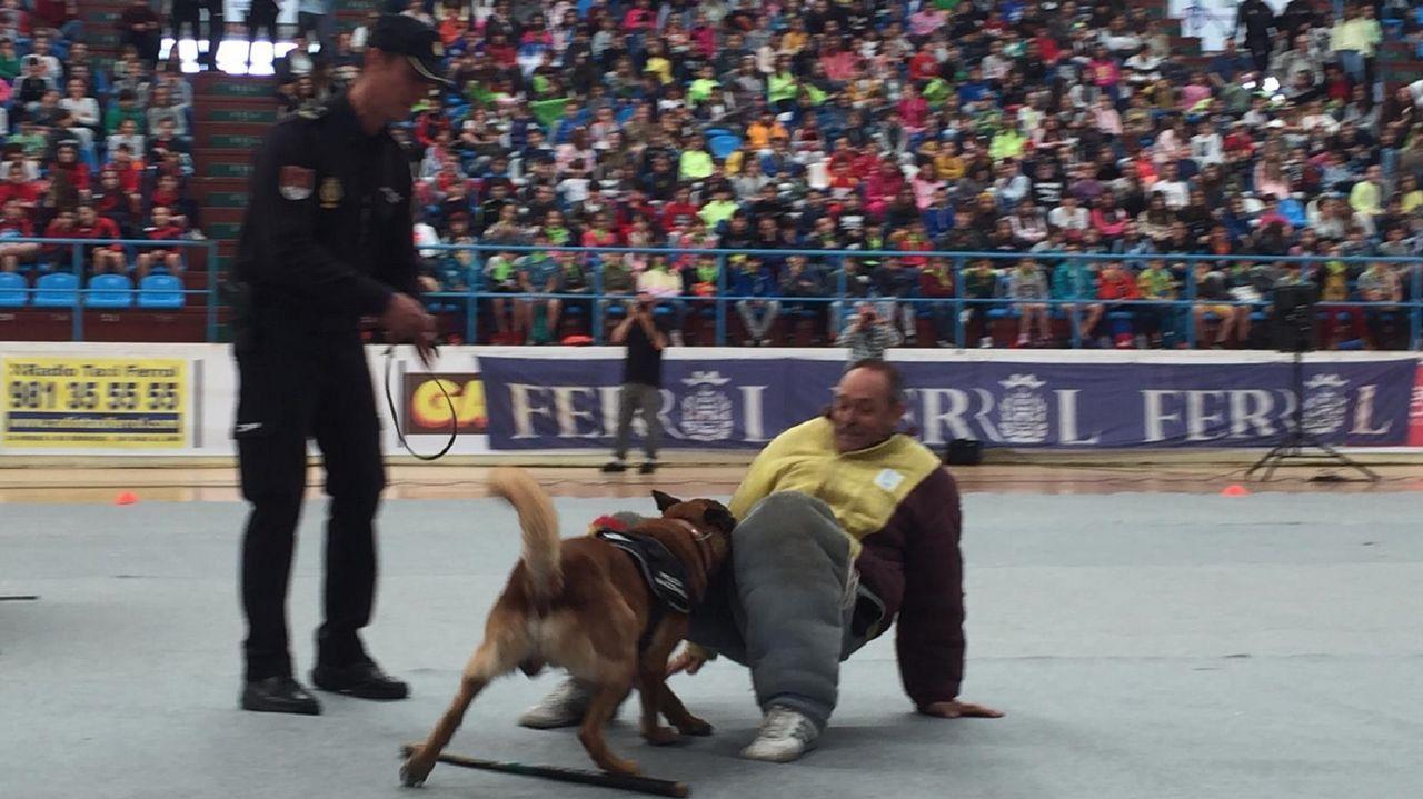 Los perros de la unidad canina dejaron boquiabiertos a los alumnos