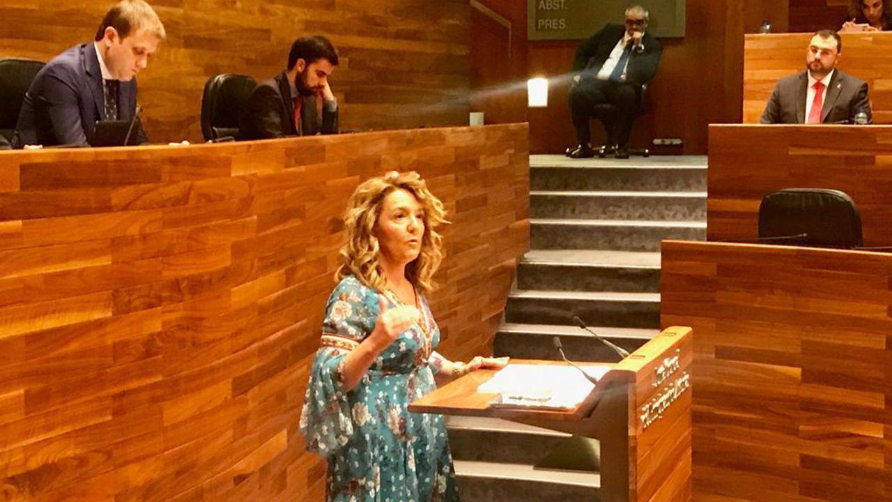 Teresa Mallada, portavoz del PP en la Junta General
