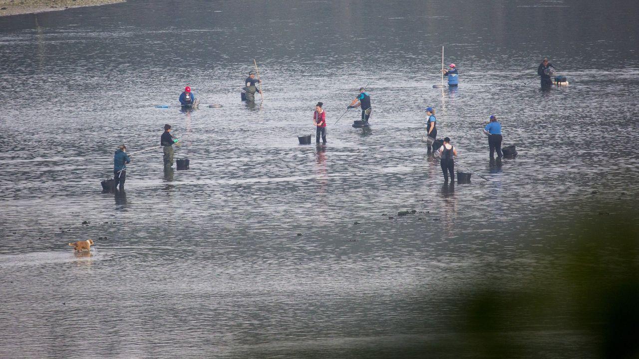 Imagen de archivo de una jornada de marisqueo en Camariñas