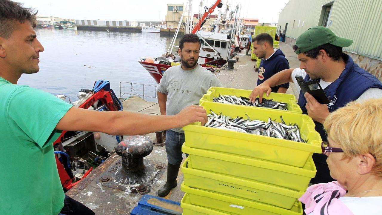 A pescadores como estos de la imagen de archivo que descargan bocarte en Burela le pagan en lonja alrededor de un euro por kilo, el mismo pescado para consumo en fresco por el que al consumidor le cobran entre cinco y siete euros en pescaderías