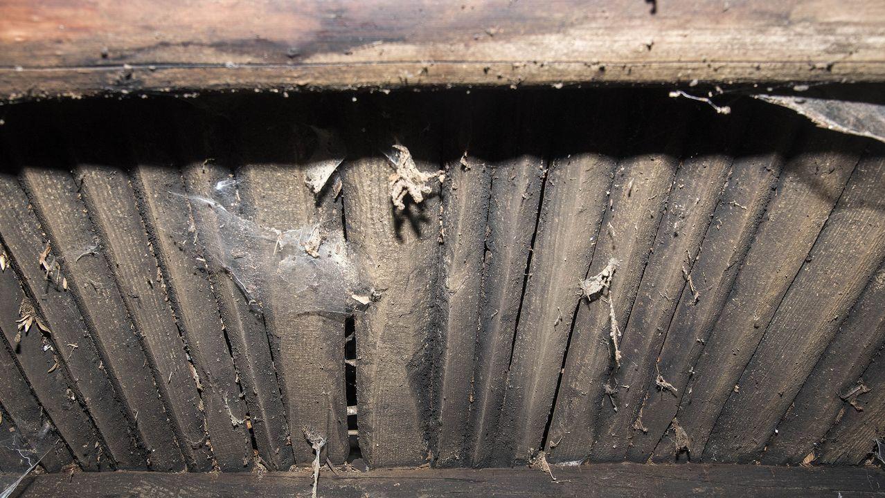 Parte inferior de la caniceira, el piso de tablas sobre el que se depositan las castañas