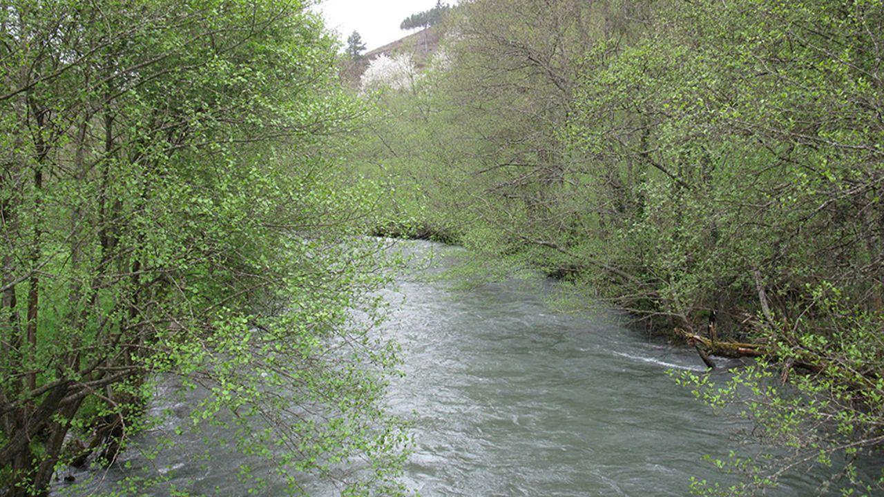Río Ibias