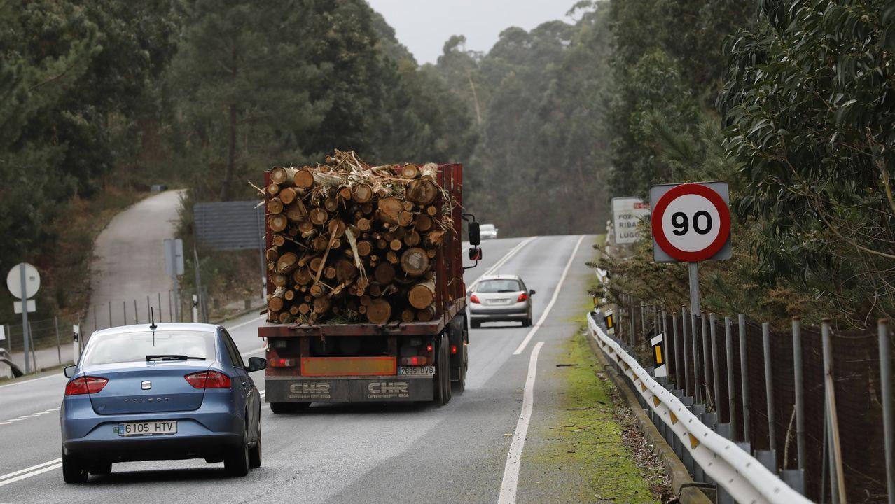 El sector de la madera genera un importante volumen de trabajo en casi toda A Mariña