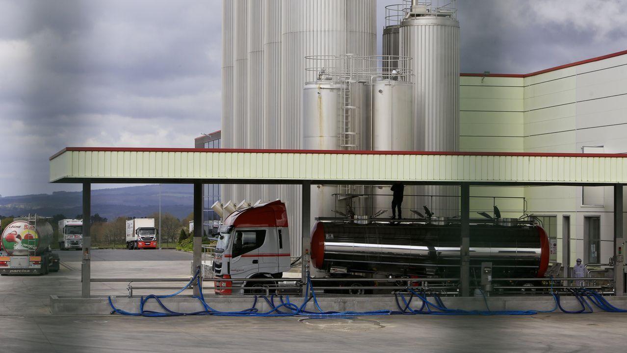 Las plantas de envasado de leche en España continúan trabajando con normalidad