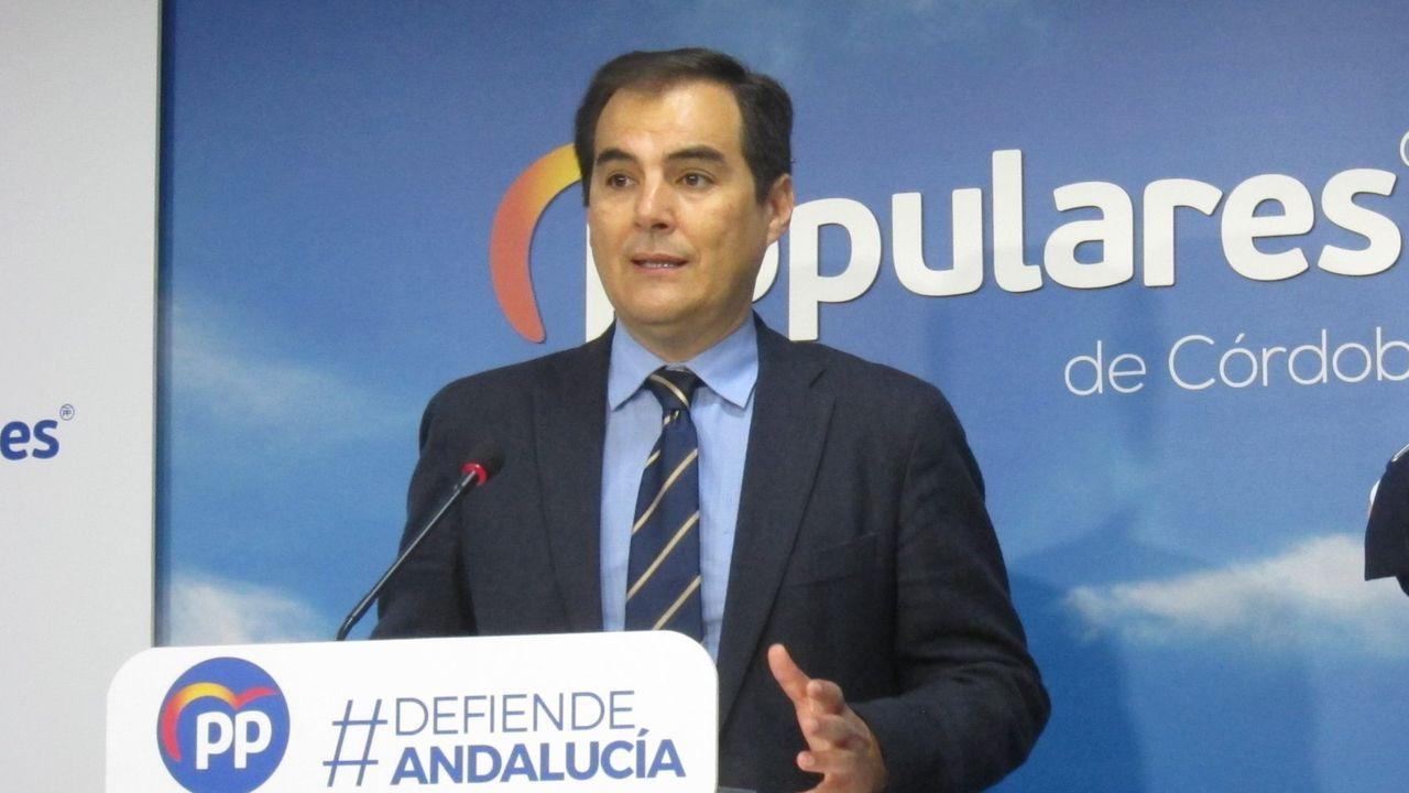 José Antonio Nieto, portavoz del PP de Andalucía