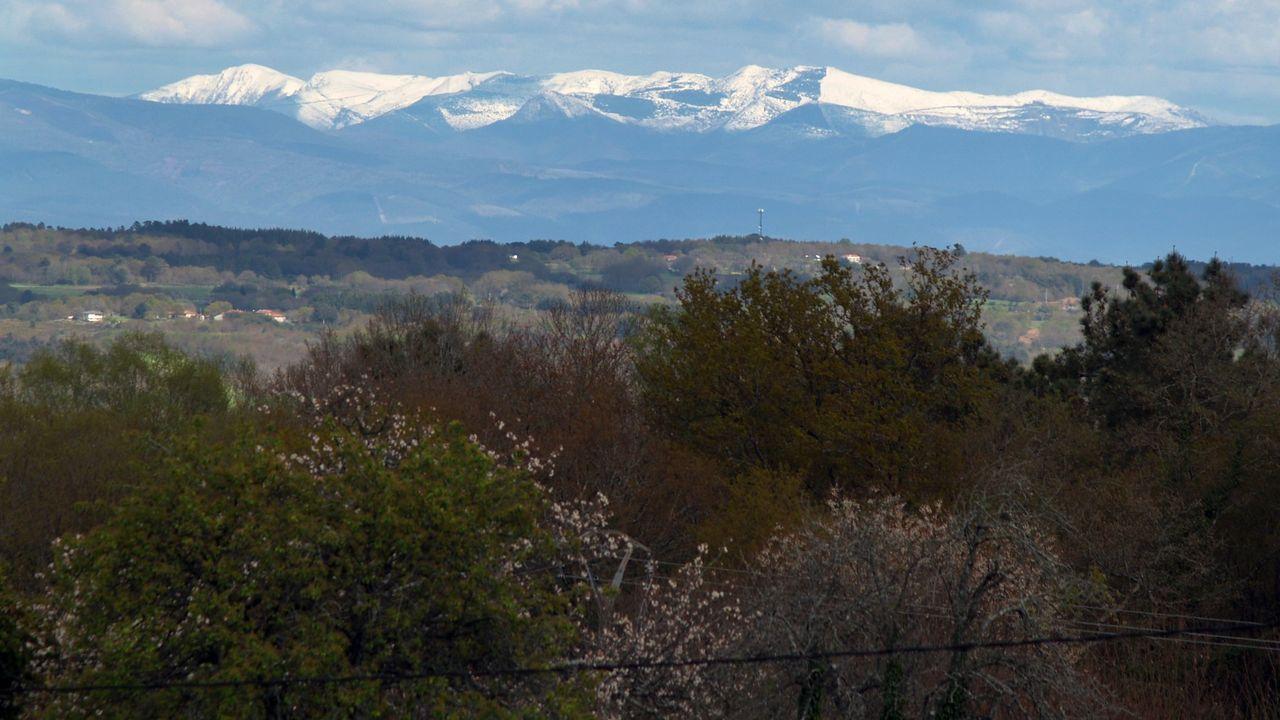 Esta semana habrá dos cribados masivos en la provincia de Ourense