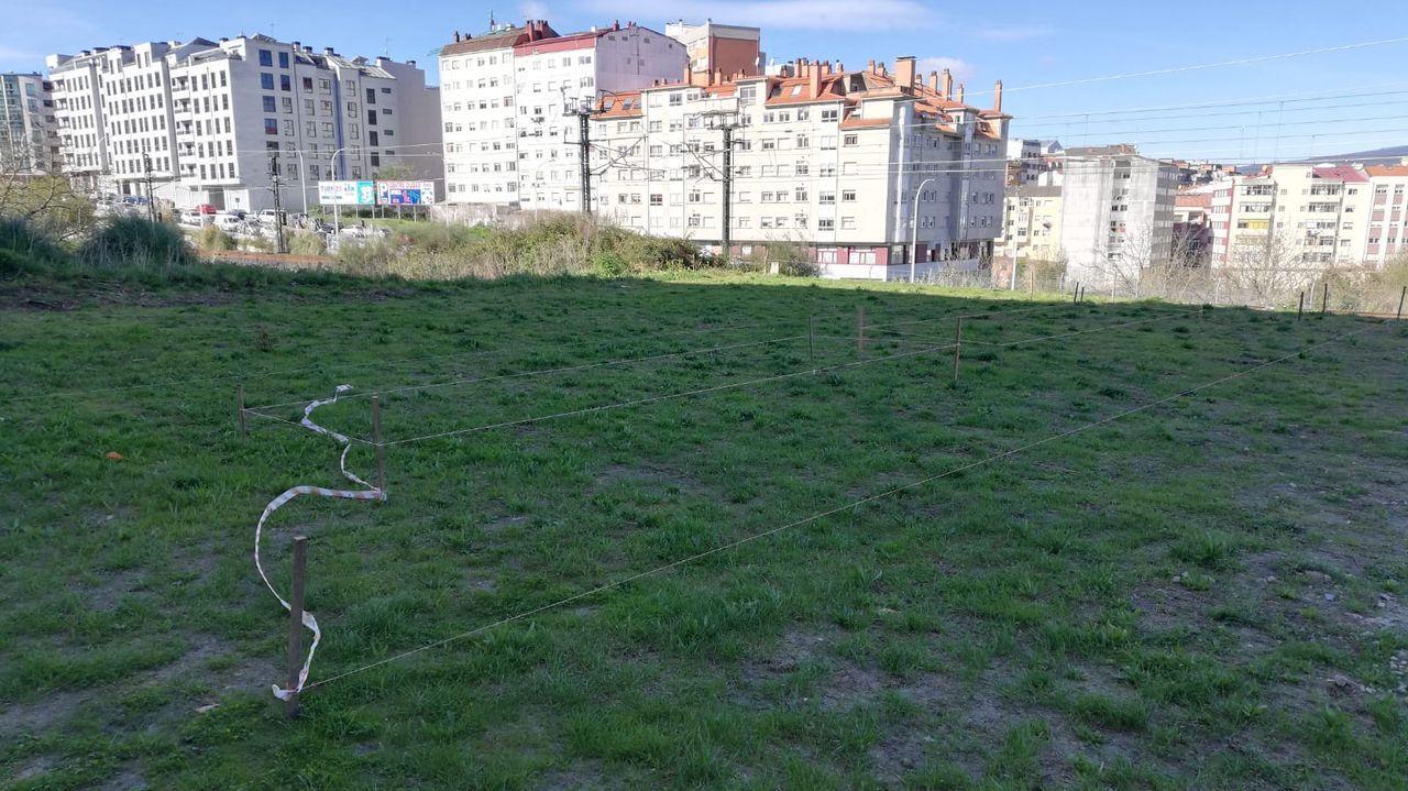 Madera, chatarra y electrodomésticos copan las visitas al punto limpio de Pontevedra.Terrenos donde se ubicará la nueva huerta urbana, en el entorno de la calle Ernesto Caballero