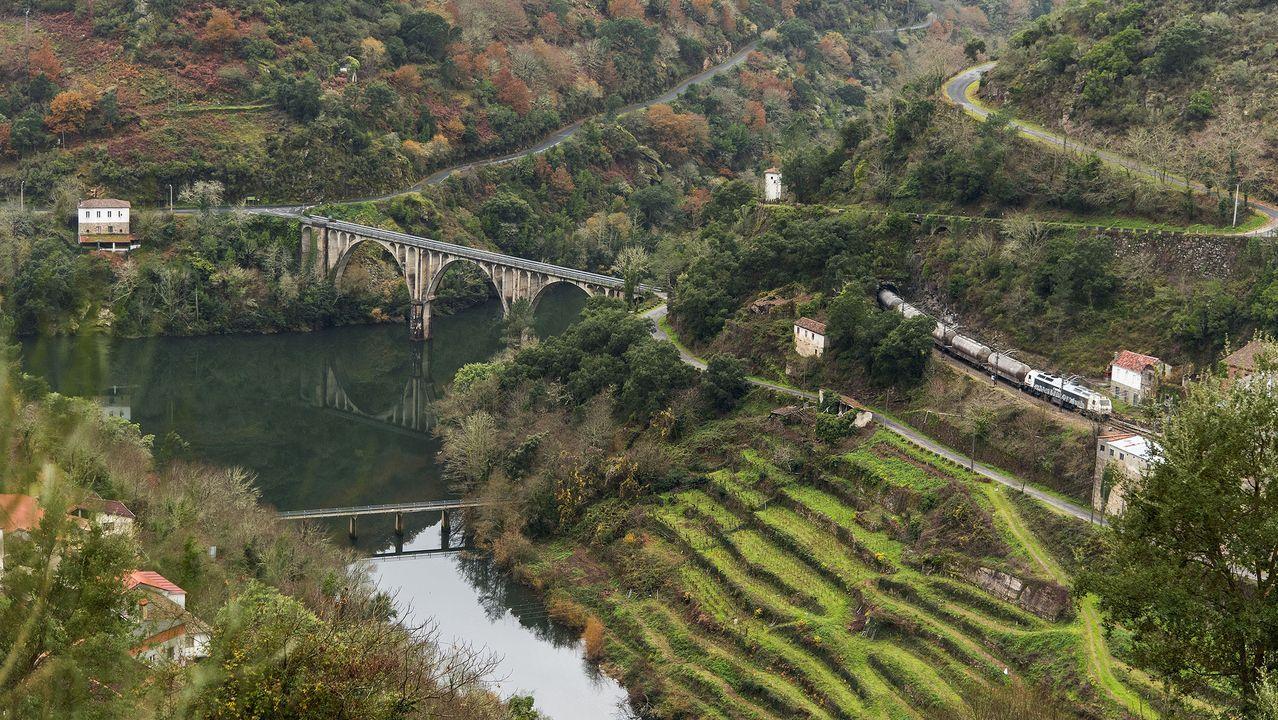 Otra vista del punto de confluencia de los ríos Cabe y Sil