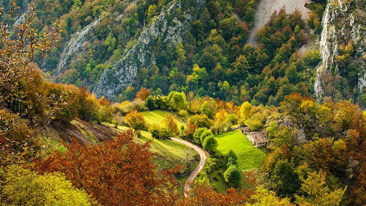 Ola de calor en Asturias.Brañagallones en otoño